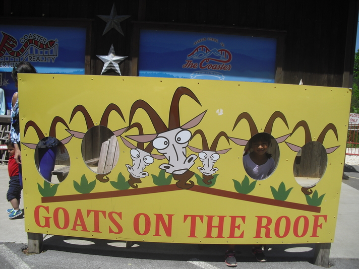 Let's go to Goats on the Roof, in Tennessee